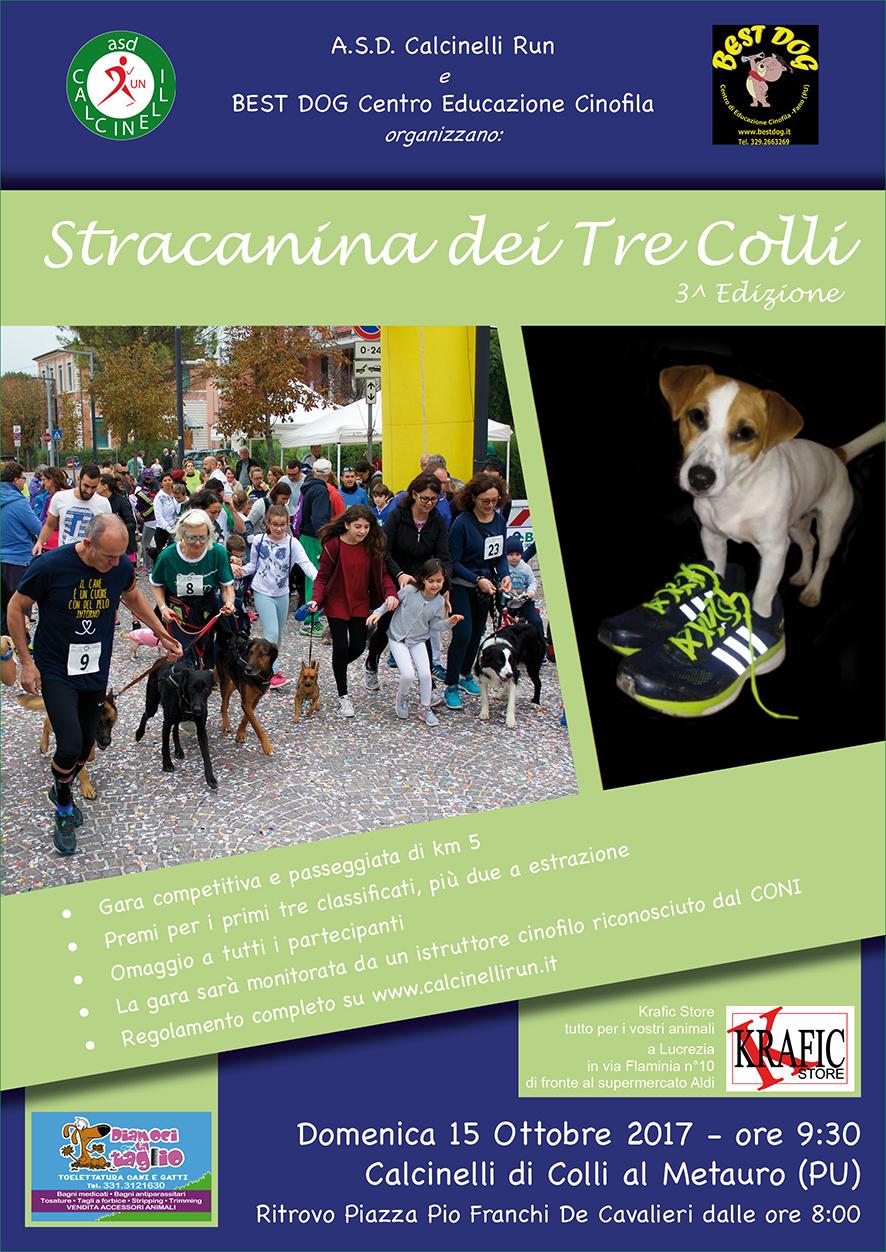 Volantino Stracanina 2017